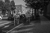 18散歩〜馬車 - 散歩と写真 Fotografia e Passeggiata