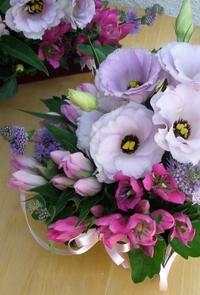 ピンクのリンドウ! - Flower ID. DESIGN