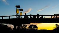 観月会の蓬莱橋 - 長い木の橋