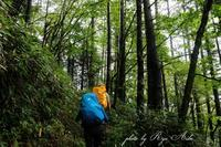 小雨の中を登る - Ryu Aida's Photo