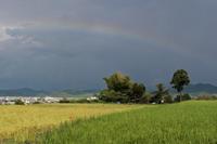 雨上がりの午後 - katsuのヘタッピ風景