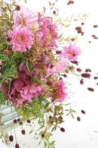 コスモスの季節 - お花に囲まれて