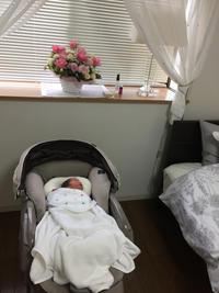 我が家に赤ちゃんが - ★ Eau Claire ★ Dolce Vita ★