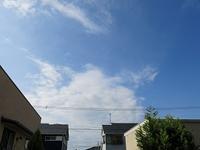 晴れ。きょうが「満月」だそうです。台風24号の進路に注意! - 自家焙煎コーヒー「Gaya通信」