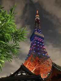お月見フィットネス@東京タワー - やよいの空