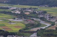 稲穂の季節の人吉盆地を走る- 2018年・肥薩線 - - ねこの撮った汽車