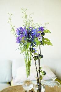 インテイアの中に溶け込むようなお花の素顔。 - ベルギー フランダースのお庭より