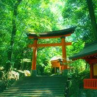 極秘の場所も☆宇佐神宮「限定」のアレは、令和元年5/26(日)まで♡ - poem  art. ***ココロの景色***