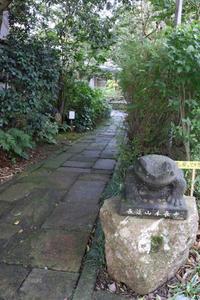 静かな観光地 - CHIROのお庭しごと