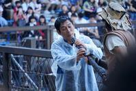 USJウォーターワールド @2018-09-19 - (新)トラちゃん&ちー・明日葉 観察日記