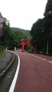 箱根、道志道200kmライド - 仮想行