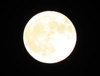 十六夜の月 - 風にのって・・・