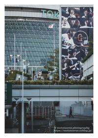 プロ野球 - ♉ mototaurus photography