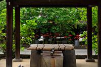 妙蓮寺の芙蓉と彼岸花 - 花景色-K.W.C. PhotoBlog