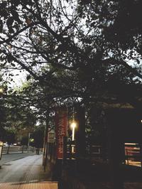 サプライズな贈り物 - 【熊本エステ/東京】あなたの綺麗をプロデュース♡サロン・スクール経営♡渡邊明美