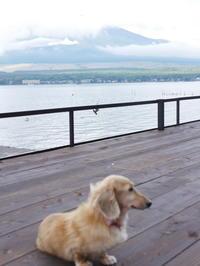 秋の休日@山中湖②('ω') - ほっこりしましょ。。