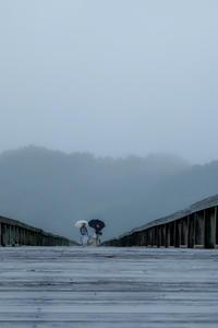 小雨降る日に - 長い木の橋
