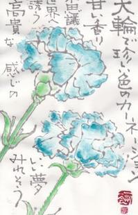 水色のカーネーション♪♪ - NONKOの絵手紙便り