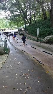 茨城県自然博物館(公園) - ~ワンパク男子子育て中~