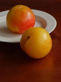 初秋から中秋までの果物たちのポートレイト - Baking Daily@TM5