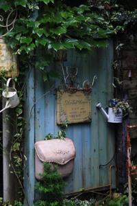 雨の日のハーバルハウスさん - ゆきなそう  猫とガーデニングの日記