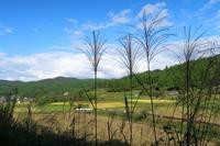 玄関先直売所 - ~葡萄と田舎時間~ 西田葡萄園のブログ