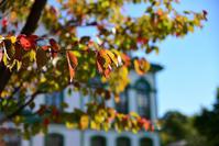 秋の村 - esseな時間