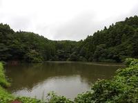 季節を彩る植物たち - 千葉県いすみ環境と文化のさとセンター