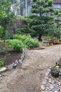 冬の準備と裏庭の様子 - refresh-3