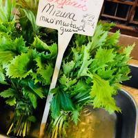 Old Hook Farmのオーガニックの採れたてのお野菜たち。 - 玄米菜食 in ニュージャージー