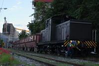 貨物列車と彼岸花 - nyan5 blog