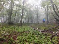 闇ナベオフ【奈良】9/23 - 静かなお山の森歩き~♪
