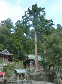 諏訪神社 - 平野部屋