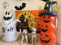一足お先にHappy Halloween - 小鉄と斗和の親子日記