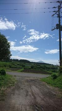 来るぞ、台風24号 - 山脇農園ブログ