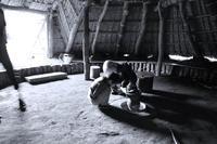 第47侯虫隠れて戸を塞ぐ - Wind Tribe Story