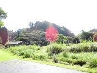 今って何月? - 千葉県いすみ環境と文化のさとセンター