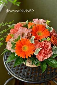 夢は逆夢。 - 花色~あなたの好きなお花屋さんになりたい~