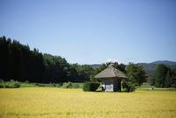 1414 秋の荒神神社 - 四季彩空間遠野