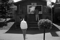 アイスクリームスタンドとアベの農業抹殺政策 - 照片画廊