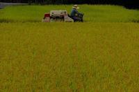 収穫 - きずなの家