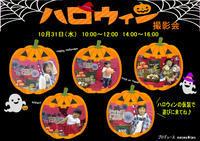 撮影会のポスター制作 - maruwa★taroのFelt Factory