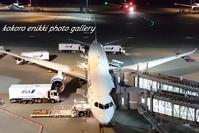 「羽田空港国際線ターミナルから東京ゲートブリッジへ」 - こころ絵日記