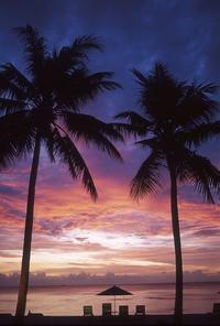 パラオパシフィックリゾート - バリ島大好き