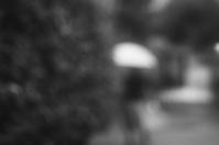 雨の日(3cut) -     ~風に乗って~    Present