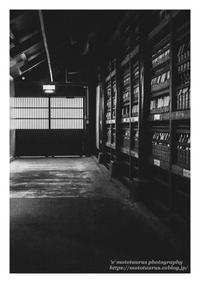 蔵守 - ♉ mototaurus photography