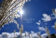 山でお昼寝^^(9月の山・Ⅴ) - FUNKY'S BLUE SKY