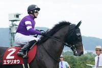 ワグネリアン、ダービー馬はやっぱり強かった神戸新聞杯(Full Version) - Turfに魅せられて・・・(写真紀行)