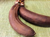 冷蔵庫にあった「忘れられたバナナ」日焼けした? - 設計事務所 arkilab