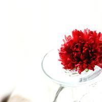 成人式の髪飾り - galette des Rois ~ガレット・デ・ロワ~